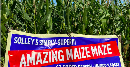 Solleys Maize Maze
