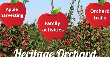 Brogdale Heritage Orchard Rescue Days CROP